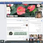 הגדרות אבטחה לחשבון הפייסבוק